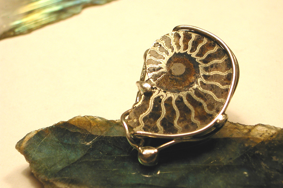 Fossile serti sur une bague en argent